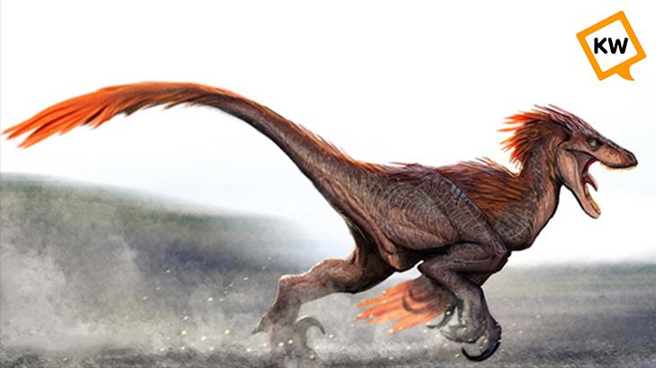 dinosaurios_plumas_kwtv